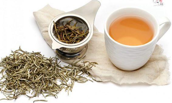 Thần dược làm đẹp trà trắng